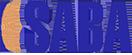 Introducing Saba Tire Cord Company